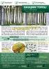 Nasadzenie plantacji wierzby i topoli - biomasa i drewno okrągłe (papierówka)