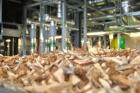 Biomasa, czyli czyste ciepło dla Częstochowy